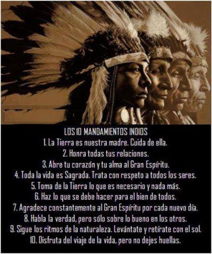 0ab86113e5c9ec1e8db4b0cbc84756aa--american-indians-native-american